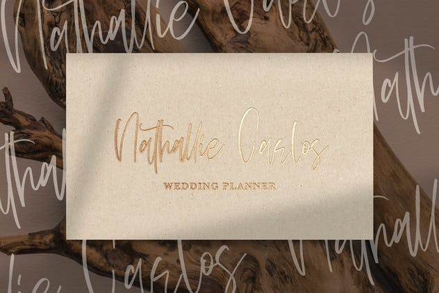 Sellviny Queen - Handwritten Font - product preview 7