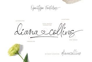 Thumbnail for Stephen & Gillion - Signature Script