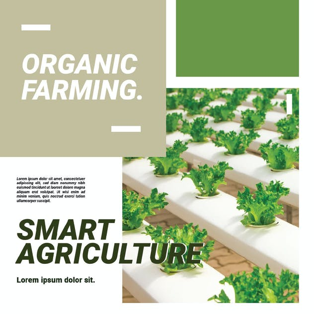 Smart Agriculture Advertising - product preview 4