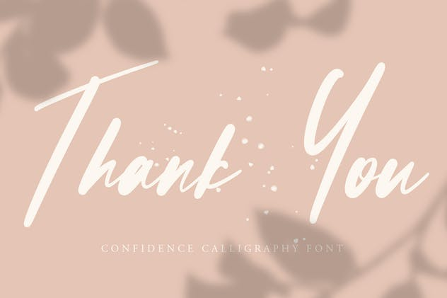 Confidence - Calligraphy Font - product preview 8