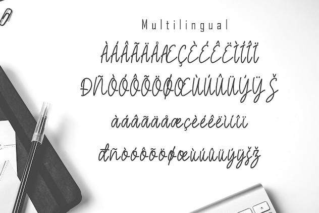 Magelius - Monoline Script Font - product preview 6