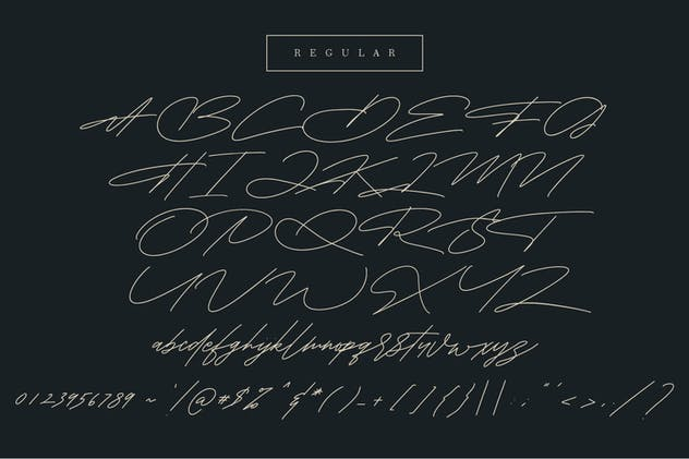 Shaloems Handwritten Signature Font - product preview 8