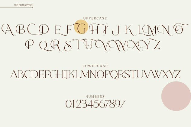 Qene-G - Serif & Signature Script Font Duo - product preview 3