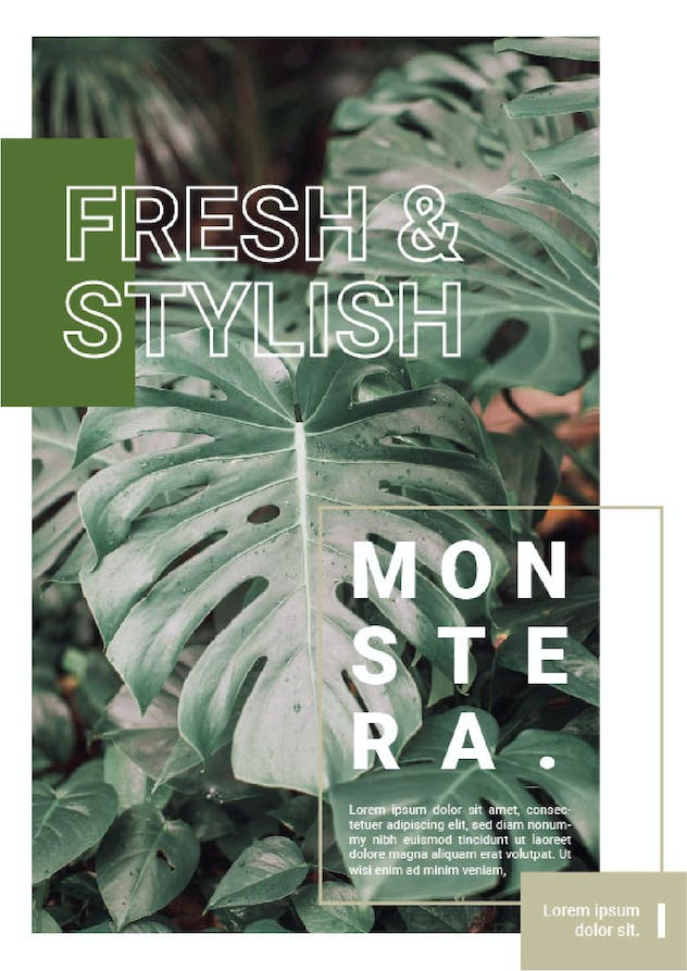 Minimalist Monstera - product preview 1