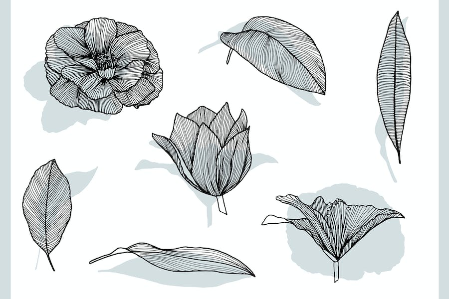 Lineart Floral Patterns & Elements - product preview 10