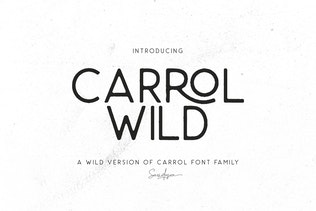 Thumbnail for Carrol Wild - Modern Sans