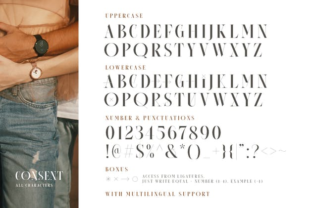 Consent - Editorial Serif Font - product preview 9