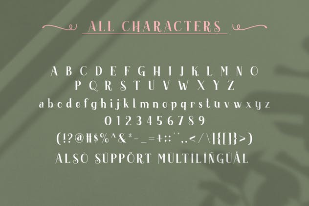 Akserant Display Font - product preview 9