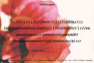 Thumbnail for Orchid Font