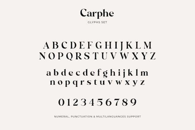 Carphe Paris - product preview 10