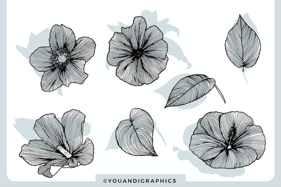 Lineart Floral Patterns & Elements - product preview 11