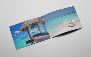 Thumbnail for Brochure for Hotels and Resorts