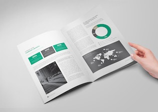 Thumbnail for The Brochure / The Annual Report