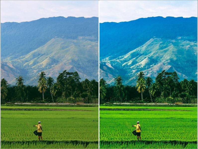 Preview image 3 for Countryside Lightroom Presets