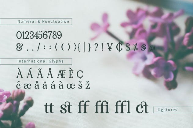 RENDA - Serif - product preview 6