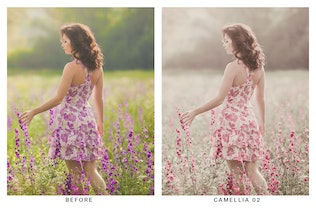 Thumbnail for 20 Lilac Lightroom Presets and LUTs