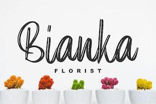Elpanas - Beauty Brush Script