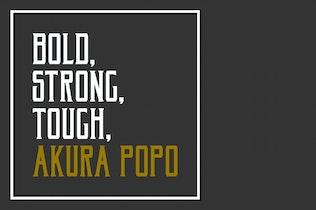Miniature pour Akura Popo Pro