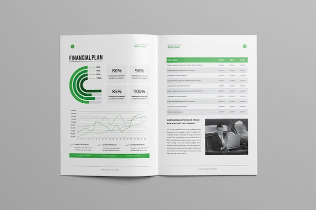 Business Plan 2017 - product preview 5