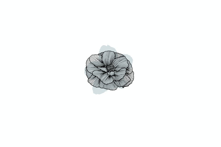 Lineart Floral Patterns & Elements - product preview 6