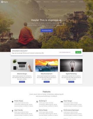 Thumbnail for Hayla - Multipurpose Business Website Template