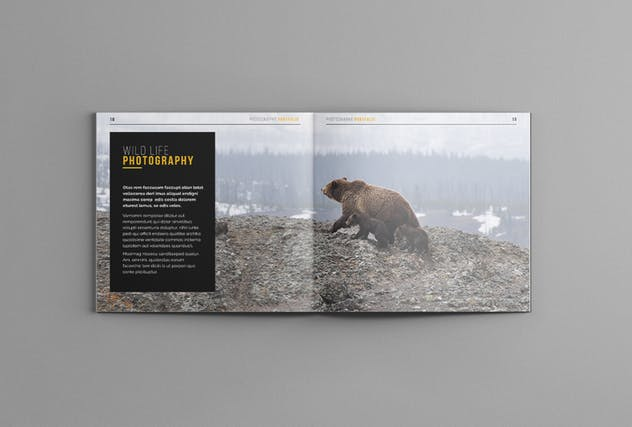 Photography Portofolio Templates - product preview 10
