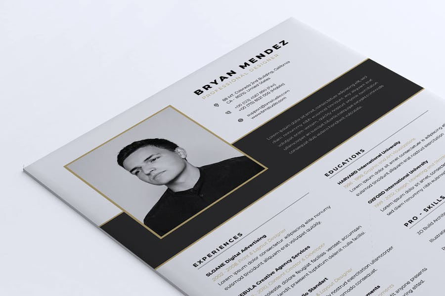 Minimalist CV Resume Vol.42 - product preview 4