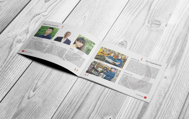 Business Plan - product preview 4