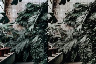 Thumbnail for Botanical Mobile & Desktop Lightroom Presets