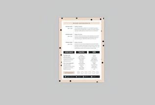 Thumbnail for Macro Resume Designer