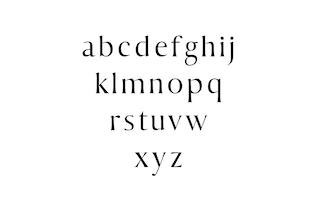 Thumbnail for Sondra Serif Fonts Family Pack