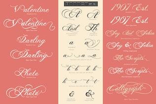 Miniature pour Photographie - Script Wedding Font