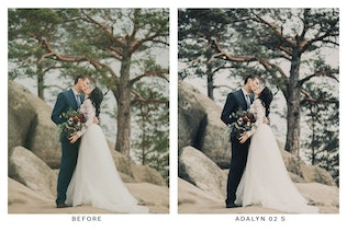 Thumbnail for 20 Bohemian Light Lightroom Presets and LUTs