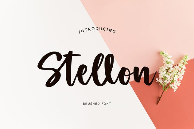 Stellon Brush Font - product preview 1