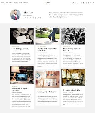 Candor - Responsive WordPress Blog Theme