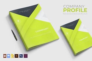 Miniature pour Profil de l'entreprise | Brochure