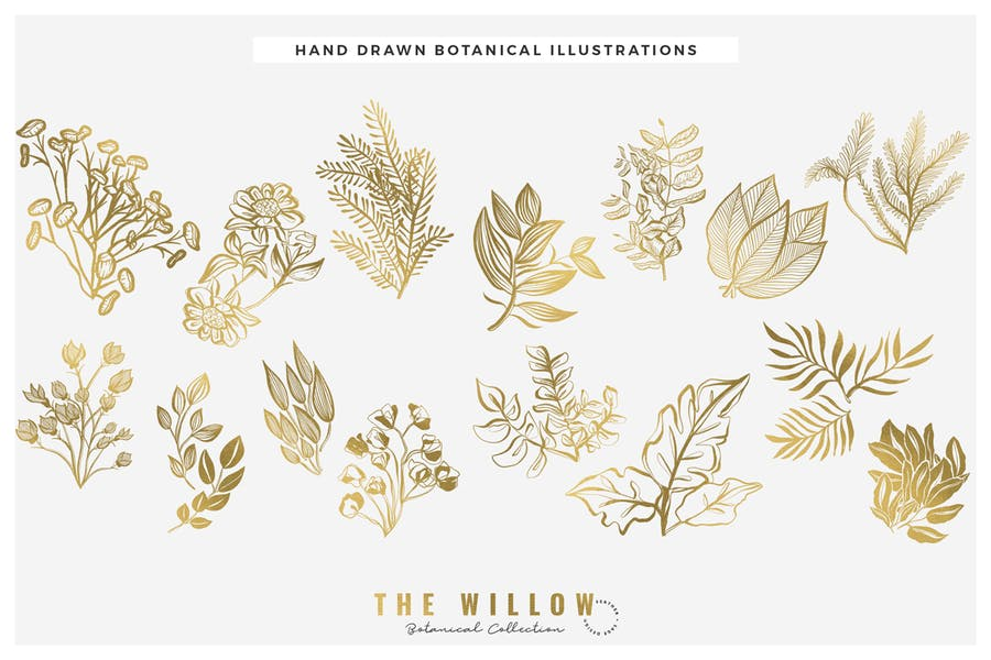 The Willow Graphic Collection - product preview 5