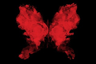 Thumbnail for 75 Rorschach Butterflies Photoshop Brushes