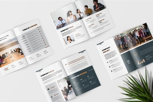 Thumbnail for Terra - Company Profile