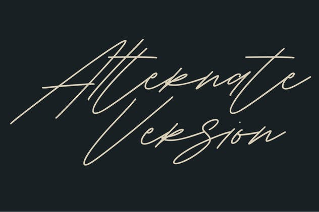 Shaloems Handwritten Signature Font - product preview 3