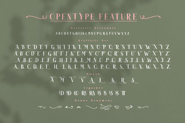 Akserant Display Font - product preview 8