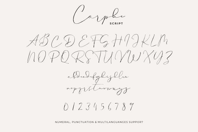 Carphe Paris - product preview 11