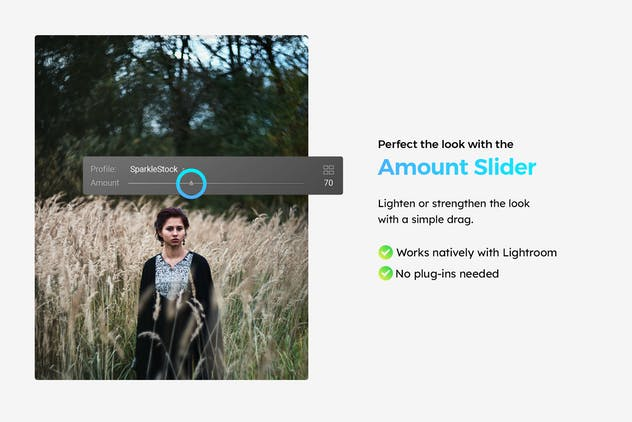 20 Moody Woods Lightroom Presets & LUTs - product preview 2