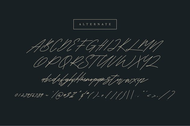 Shaloems Handwritten Signature Font - product preview 9
