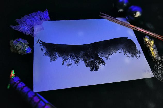 Ink and Nature Compositions - product preview 6