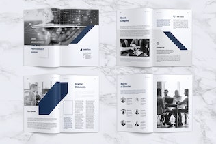 Thumbnail for LEVIDE Corporate Annual Report