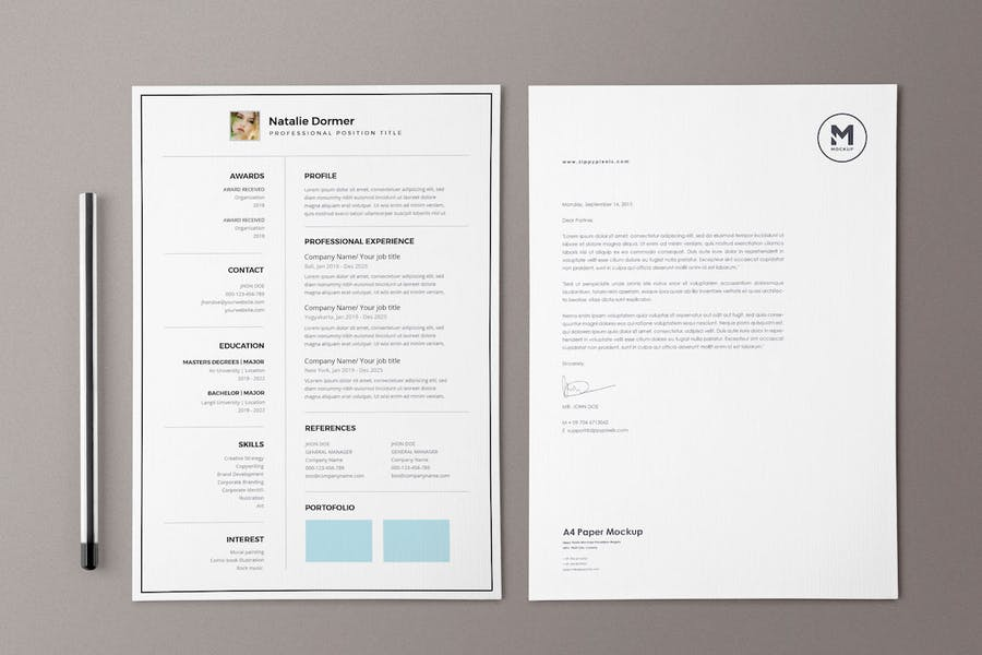 Resume / CV Template Pro - product preview 4