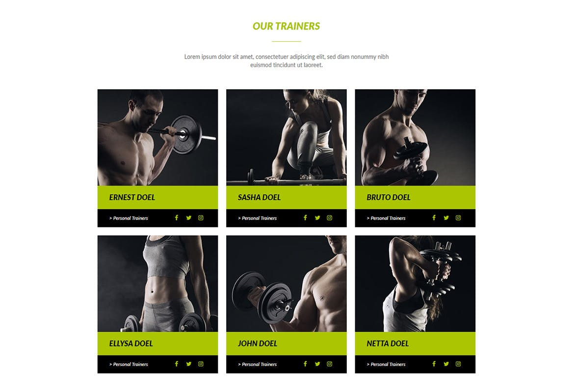 FitX - Fitness & Gym Muse Template YR