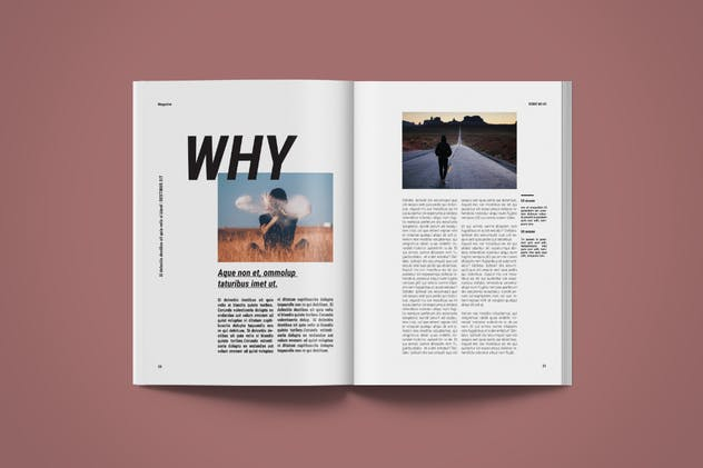 Magazine Template | More - product preview 3