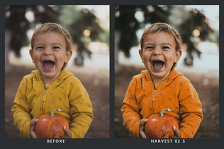 Thumbnail for 20 Pumpkin Patch Lightroom Presets & LUTs